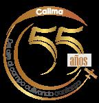 Final-Logo-55-gris